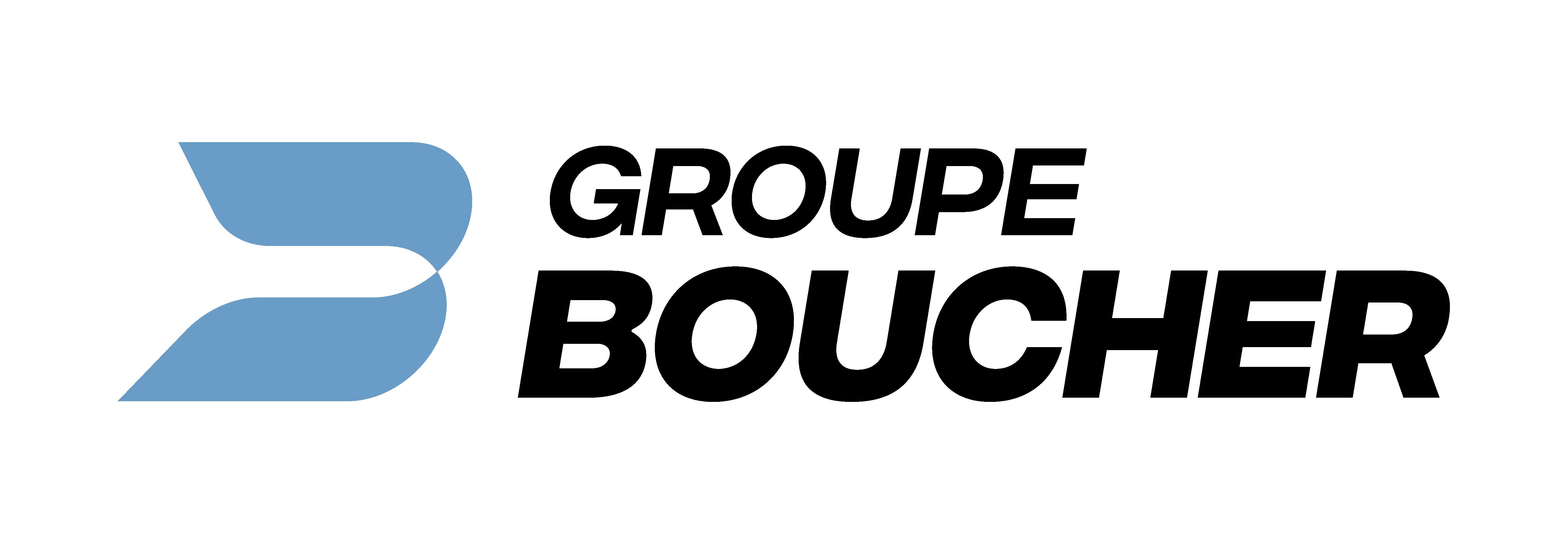 Logo - GBS – DM